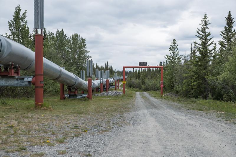 The Alyeska (Alaska) Pipeline in Copper Country, Alaska.