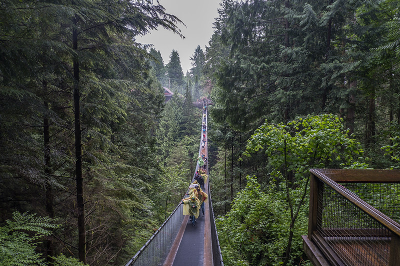 Crossing the  Capilano Suspension Bridge in the rain, Vancouver, B.C.