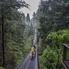 Crossing the  Capilano Suspension Bridge in the rain, Vancouver, B.C.