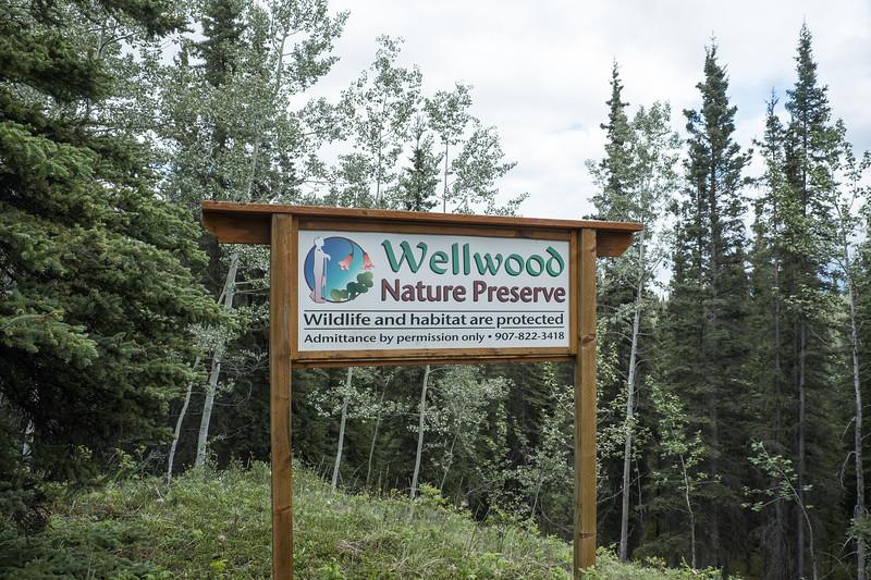 Taking a walk in the Wellwood Nature Preserve, Copper River area, Alaska.