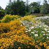 Botanical Gardens, Bath, Maine.