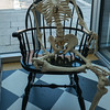 Skeleton in the Rockland m Maine Farnsworth Art Museum.