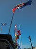 Flags from many places, Key West, Florida.