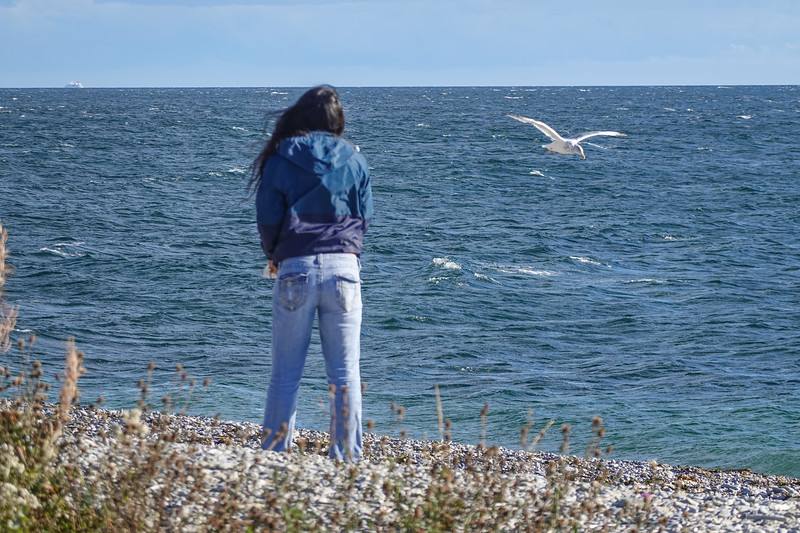 Tourist making birdie friends in Forillion National Park, Gaspe, Quebec, Canada.