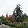 Grounds at the Portland Rose Test Gardens.