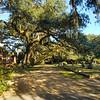 Graveyard in West Feliciana Parish, Baton Rouge, Louisiana.