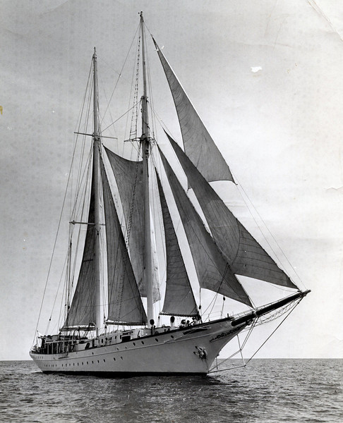 "Dale and I worked as deck crew on this schooner ""Yankee clipper"" in 1963 nearly 50 years ago when she cruised the Bahamas out of Miami. She was owned then by Mike Burke of Windjammer Cruises and previously was George Vanderbilt's ""Pioneer"" with deck structures added by Burke."