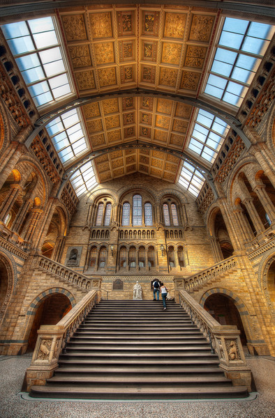 Natural History || London England