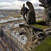 Paris roofscape from Notre Dam