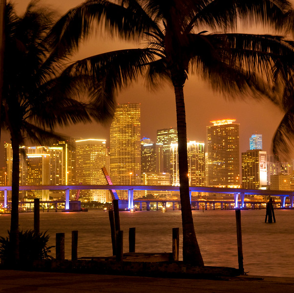 Downtown skyline and palm trees at night, Miami, FL.  Copyright - W. Keith Baum | PhotoCanal.com