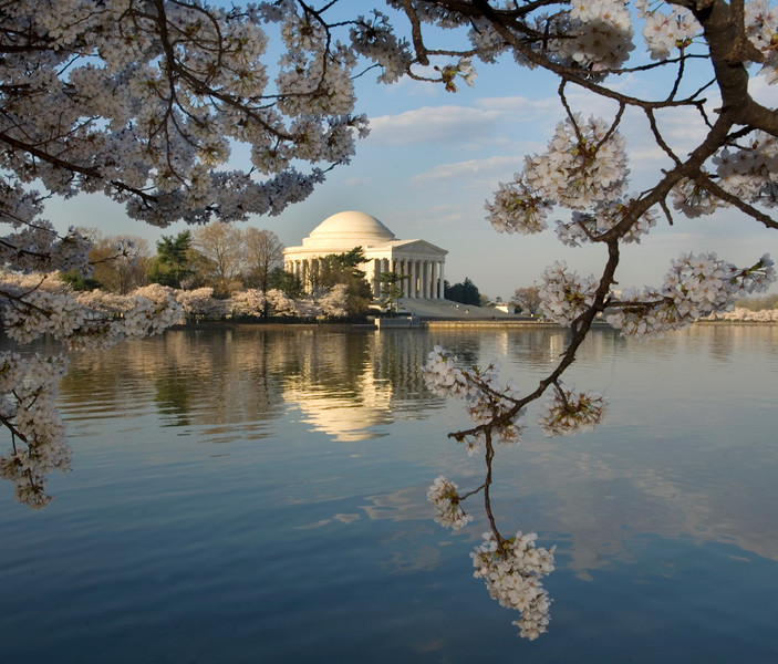 Thomas Jefferson Memorial reflected in the Tidal Basin and framed by Cherry Blossoms, Washington, D.C., USA  Copyright - W. Keith Baum | PhotoCanal.com