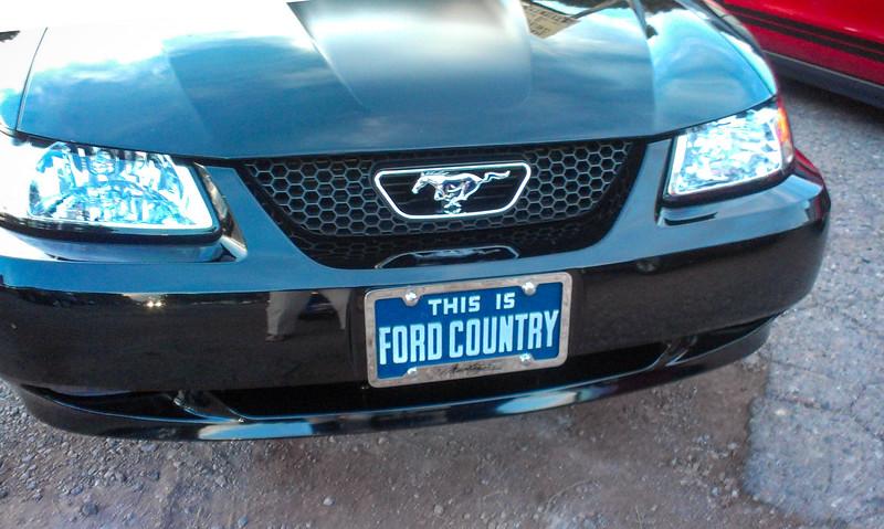 Pony50th 20140415109