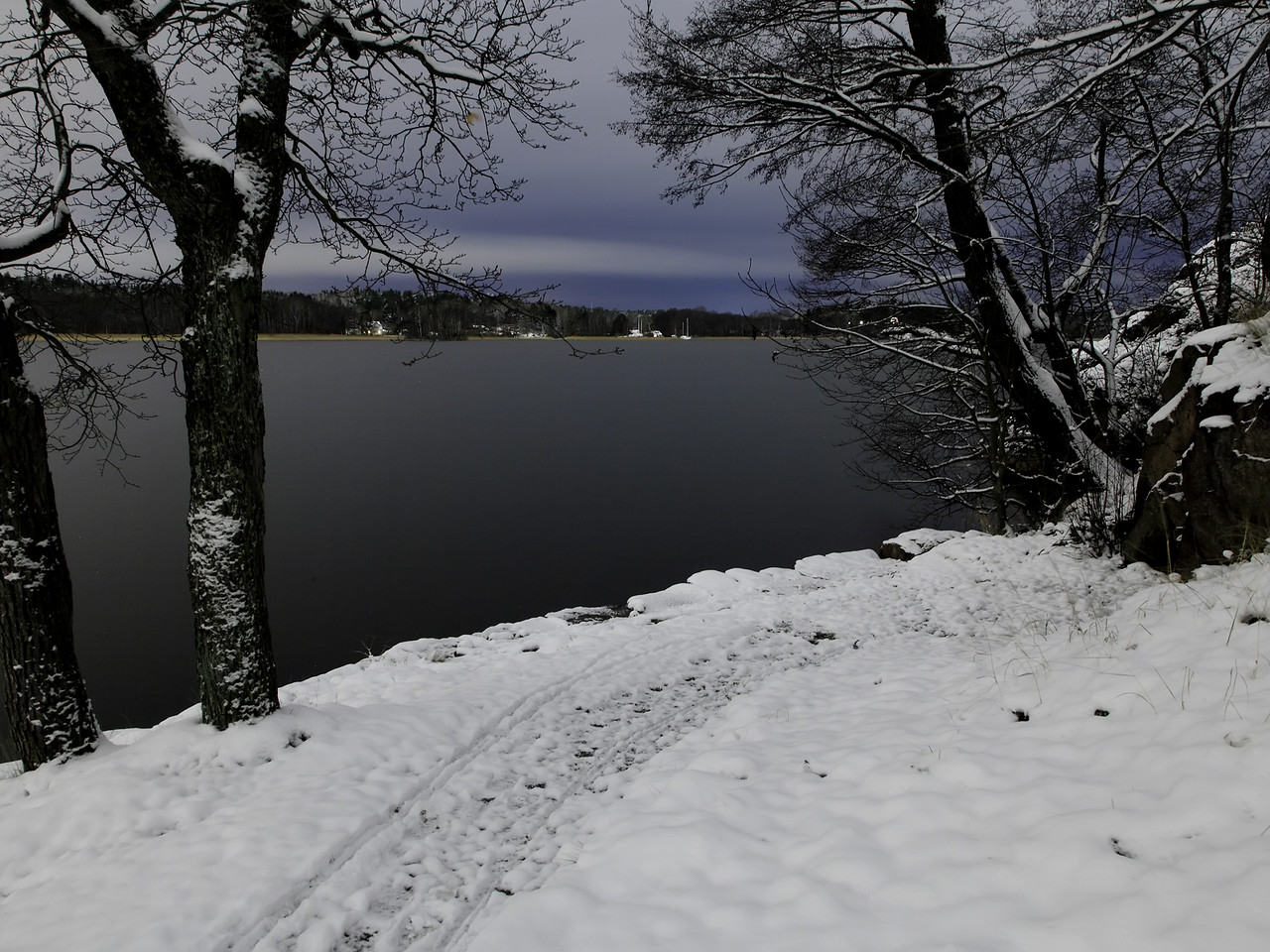 Beyond a pale winter night