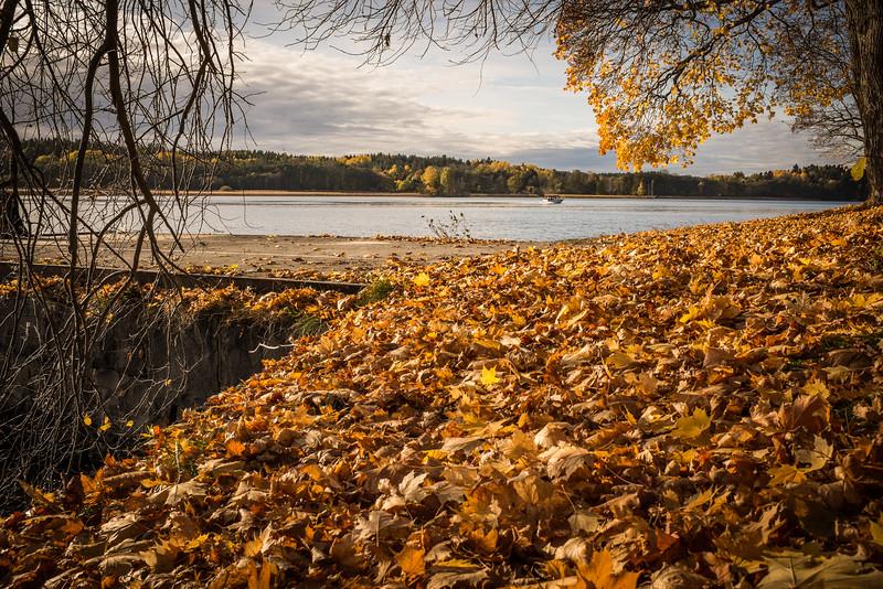 Blackebergs hösten