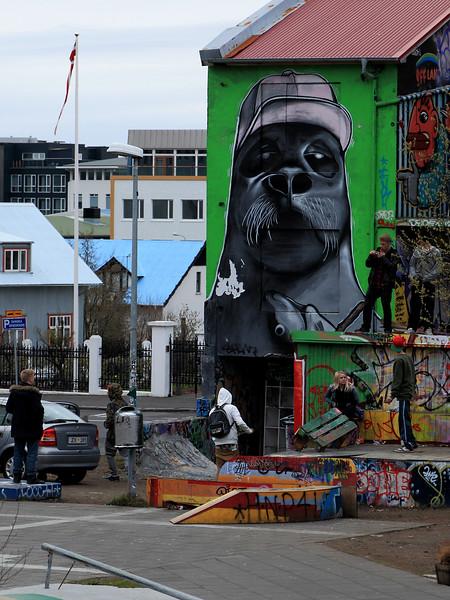 Icelandic urbanscapes