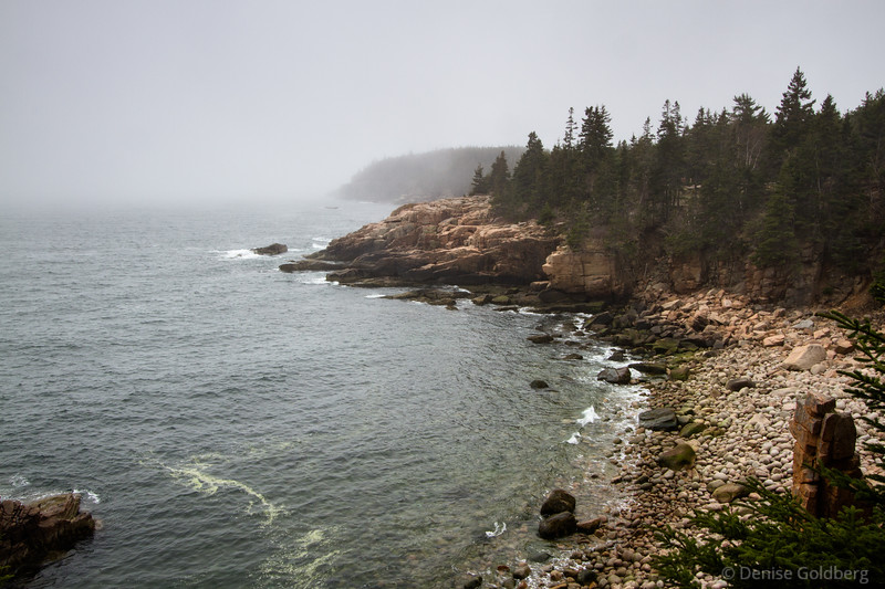 "<big>2015-05: Acadia and... May 2015</big> <br><br>I always feel Acadia National Park calling me to visit. Downeast Maine in early May 2015 was beautiful although chilly and foggy too. It was a good escape, with wanders extending from the Schoodic Peninsula, around Mount Desert Island, and to Stonington on the next peninsula to the west.   <br><br>My journal for this trip lives as entries within my blog. Click to read the <a href=""http://denisegoldberg.blogspot.com/search/label/Acadia%202015-05""><b>TRIP-SPECIFIC BLOG ENTRIES</b></a>.  <br><br>Click to visit the full <a href=""/Travel/Acadia-in-the-spring-2015/Acadia-and-May-2015/""><b>PHOTO GALLERY</b></a> from this trip."