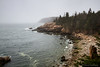 """<big>2015-05: Acadia and... May 2015</big> <br><br>I always feel Acadia National Park calling me to visit. Downeast Maine in early May 2015 was beautiful although chilly and foggy too. It was a good escape, with wanders extending from the Schoodic Peninsula, around Mount Desert Island, and to Stonington on the next peninsula to the west.   <br><br>My journal for this trip lives as entries within my blog. Click to read the <a href=""""http://denisegoldberg.blogspot.com/search/label/Acadia%202015-05""""><b>TRIP-SPECIFIC BLOG ENTRIES</b></a>.  <br><br>Click to visit the full <a href=""""/Travel/Acadia-in-the-spring-2015/Acadia-and-May-2015/""""><b>PHOTO GALLERY</b></a> from this trip."""