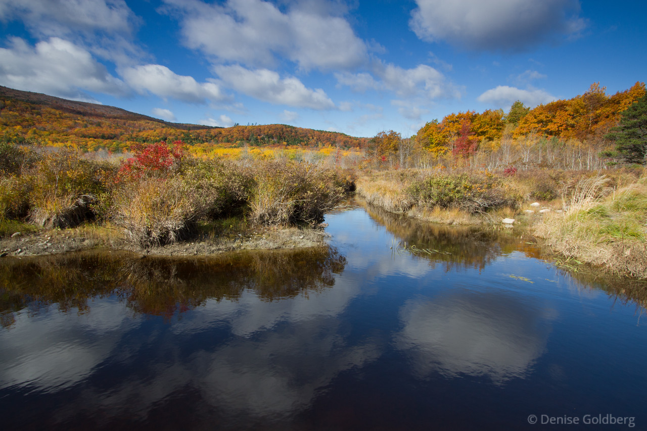 """<big>2010-10: Autumn, Acadia</big> <br/><br/>Acadia National Park often calls for me to visit; I was lucky to see late fall splendor there during my (as always) too quick 3-day visit in late October. <br/><br/> My journal for this trip lives as entries within my blog. Click to read the <a href=""""http://denisegoldberg.blogspot.com/search/label/Acadia%202010-10""""><b>TRIP-SPECIFIC BLOG ENTRIES</b></a> or my full <a href=""""http://denisegoldberg.blogspot.com""""><b>BLOG</b></a>.  <br/><br/> Click to visit the <a href=""""/Travel/Autumn-Acadia/14428659_DMtEp""""><b>PHOTO GALLERY</b></a> from this trip."""