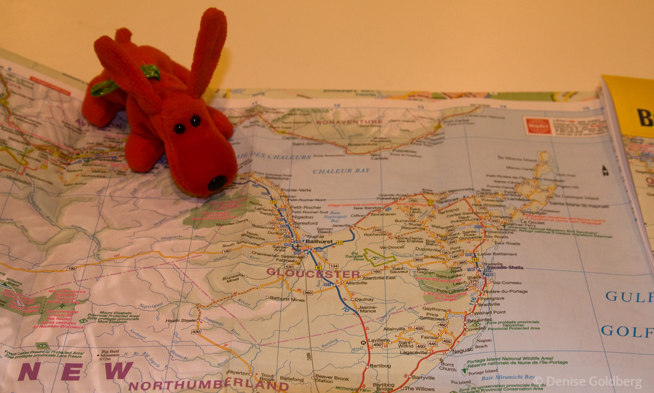 """<big>2008-08: A tale of two</big> <br><br> It's time for another escape... I'm headed to the Acadian coast of New Brunswick for a combination biking and hiking trip, with a 2-day stop at Acadia National Park on the way home again. Two wheels, two feet, two Acadias...<br><br> Click to visit my <a href=""""http://denisegoldberg2008ataleoftwo.blogspot.com/""""><b>journal</b></a> or <a href=""""/Travel/A-tale-of-two-August-2008""""><b>photo galleries</b></a> from this trip."""