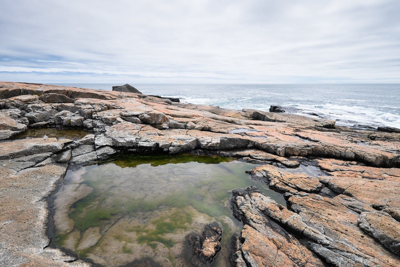 """<big>2016-05: Acadia interlude</big> <br><br>The calendar turned to May and my thoughts turned to Acadia National Park. A quick weekend in Downeast Maine gave me time to enjoy one of my favorite national parks.    <br><br>My journal for this trip lives as entries within my blog. Click to read the <a href=""""http://denisegoldberg.blogspot.com/search/label/Acadia%202016-05""""><b>TRIP-SPECIFIC BLOG ENTRIES</b></a>.  <br><br>Click to visit the full <a href=""""/Travel/Acadia-May-2016/Acadia-interlude/""""><b>PHOTO GALLERY</b></a> from this trip."""