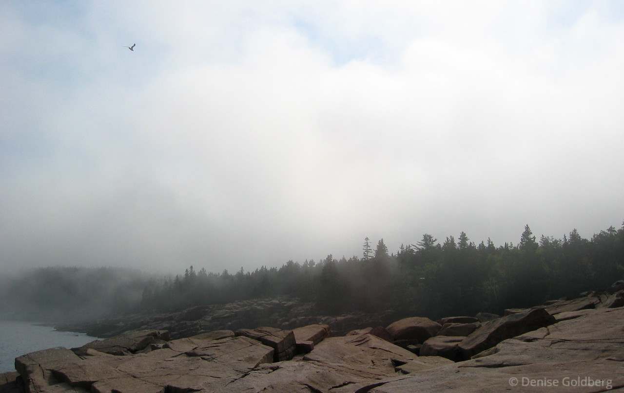 """<big>2008-06: Acadia, a return to the magic</big> <br/><br/> Acadia pulls me to the Maine coast once again for a much needed escape.<br/><br/> Click to visit my <a href=""""http://denisegoldberg2008acadia.blogspot.com/""""><b>journal</b></a> or <a href=""""/Travel/Acadia-June-2008""""><b>photo galleries</b></a> from this trip."""