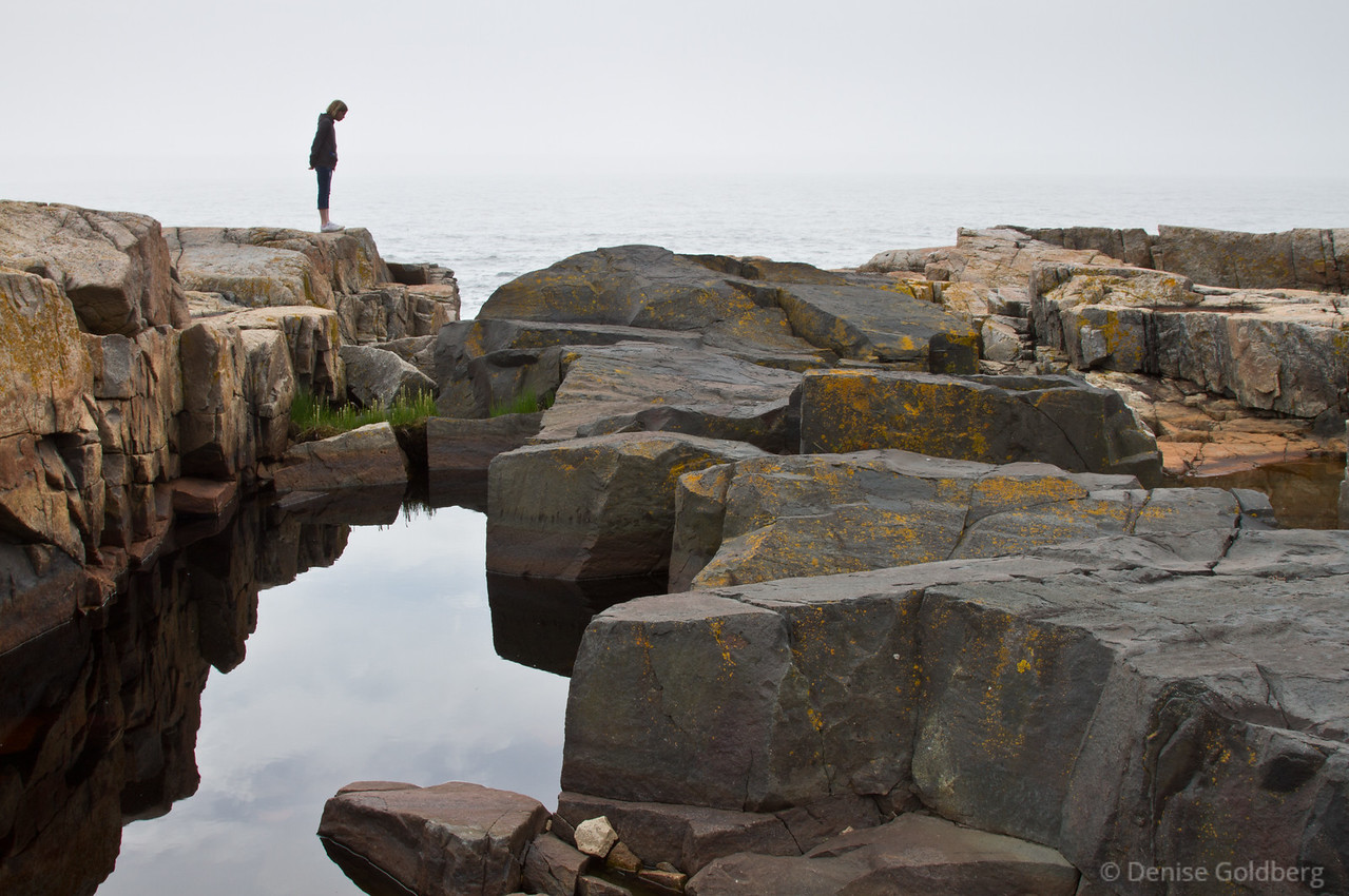 """<big>2012-05: Acadia wander</big> <br/><br/>I have been trying to visit Acadia National Park twice each year, once in the spring, once in the fall. Tacking a few days onto the long Memorial Day weekend gave me a good chunk of days to visit one of my favorite parks. <br/><br/> My journal for this trip lives as entries within my blog. Click to read the <a href=""""http://denisegoldberg.blogspot.com/search/label/Acadia%202012-05""""><b>TRIP-SPECIFIC BLOG ENTRIES</b></a> or my full <a href=""""http://denisegoldberg.blogspot.com""""><b>BLOG</b></a>.  <br/><br/> Click to visit the <a href=""""/Travel/Acadia-May-2012""""><b>PHOTO GALLERIES</b></a> from this trip."""