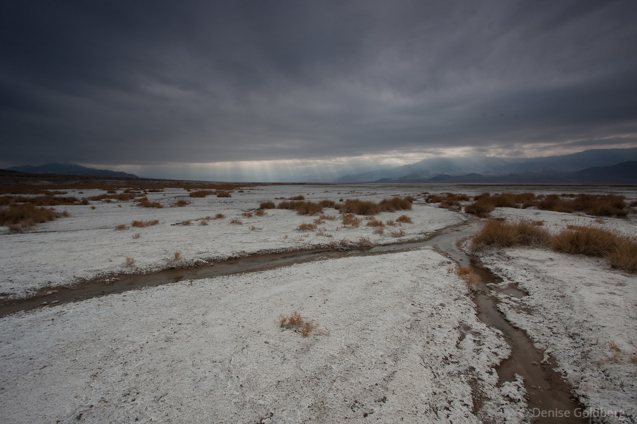 """<big>2009-12: Desert beckoning</big> <br/><br/>I seem to be developing an addiction to wandering in the desert. December brought me a too-short long weekend, a perfect time to visit Death Valley National Park and Red Rock Canyon National Conservation Area. <br/><br/> My journal for this trip lives as entries within my blog. Click to read the <a href=""""http://denisegoldberg.blogspot.com/search/label/Death%20Valley%20December%202009""""><b>TRIP-SPECIFIC BLOG ENTRIES</b></a> or my full <a href=""""http://denisegoldberg.blogspot.com""""><b>BLOG</b></a>.  <br/><br/> Click to visit the <a href=""""/Travel/Desert-beckoning-December-2009""""><b>PHOTO GALLERIES</b></a> from this trip."""