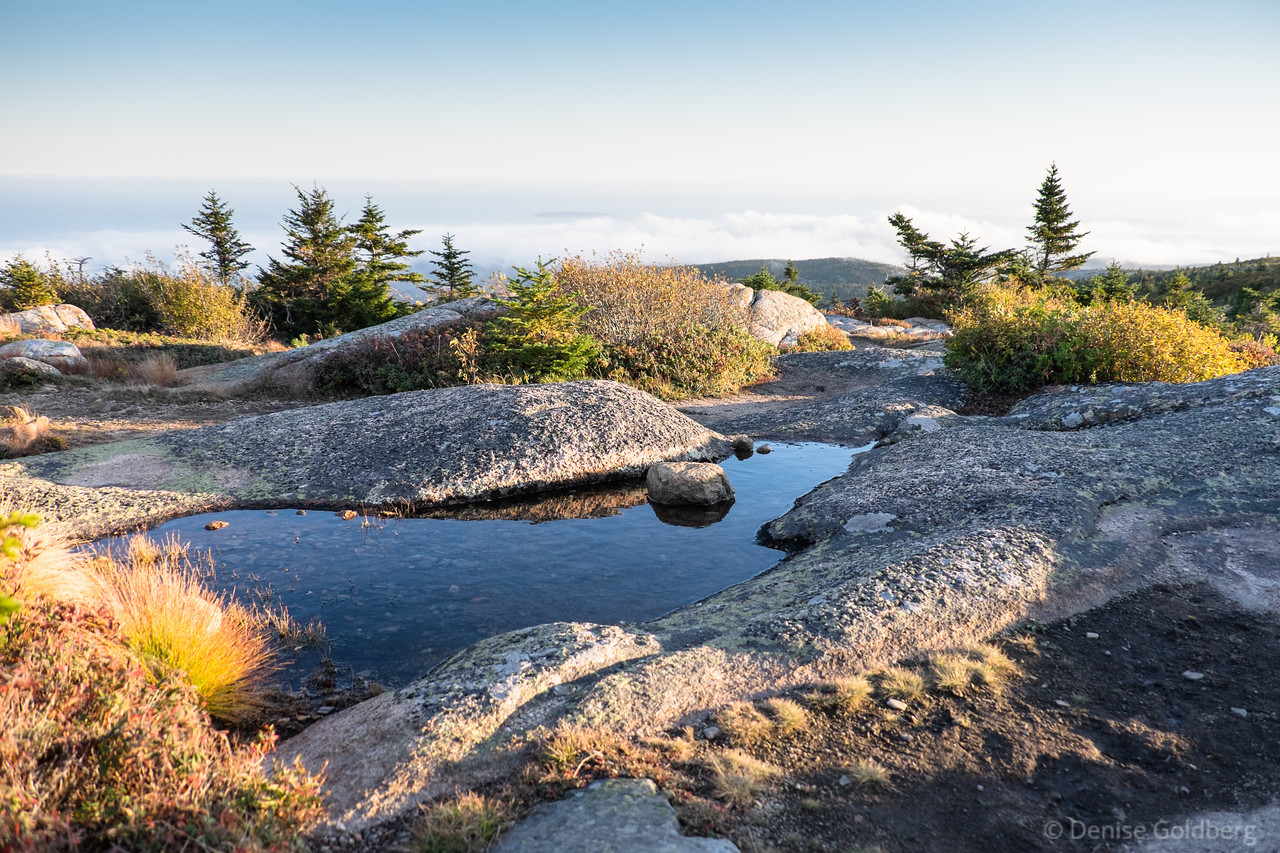 """<big>2015-10: Midcoast to Downeast Maine</big> <br><br>It was time to feed my addiction for wandering in Acadia National Park. I stopped to visit a friend and to wander at some midcoast Maine parks, then headed to Acadia for several days of beauty.  <br><br>My journal for this trip lives as entries within my blog. Click to read the <a href=""""http://denisegoldberg.blogspot.com/search/label/Acadia%202015-10""""><b>TRIP-SPECIFIC BLOG ENTRIES</b></a>.  <br><br>Click to visit the full <a href=""""/Travel/Midcoast-Downeast-Maine-2015/""""><b>PHOTO GALLERY</b></a> from this trip."""