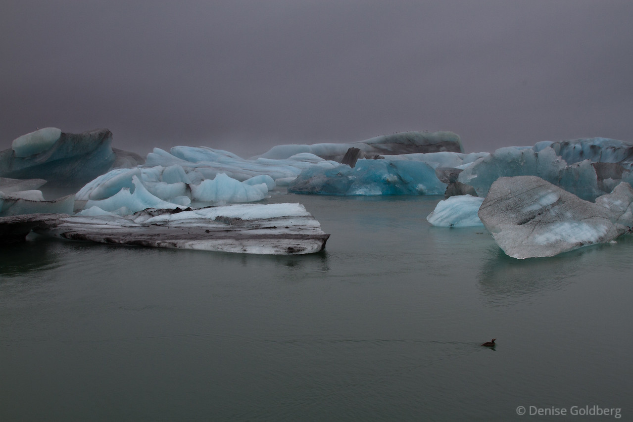 """<big>2010-09: to Iceland!</big> <br/><br/>Iceland has been on my """"must visit"""" list for a long, long time. You would think that 10 days would be enough, but it wasn't, not even close! I hope that these photos allow you to share in the beauty. <br/><br/> My journal for this trip lives as entries within my blog. Click to read the <a href=""""http://denisegoldberg.blogspot.com/search/label/Iceland%202010""""><b>TRIP-SPECIFIC BLOG ENTRIES</b></a> or my full <a href=""""http://denisegoldberg.blogspot.com""""><b>BLOG</b></a>.  <br/><br/> Click to visit the <a href=""""/Travel/Iceland-2010""""><b>PHOTO GALLERIES</b></a> from this trip."""