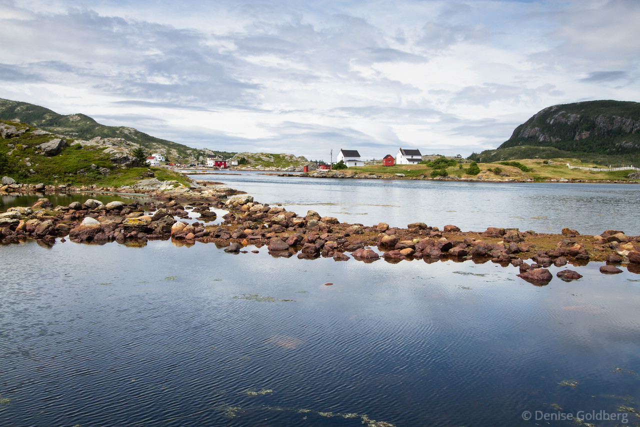 """<big>2014-07: Newfoundland 2014</big> <br><br>The island of Newfoundland called to me for another visit. I wandered St. John's, the Eastport Peninsula, and Twillingate... such a beautiful place!<br><br>My journal for this trip lives as entries within my blog. Click to read the <a href=""""http://denisegoldberg.blogspot.com/search/label/Newfoundland%202014-07""""><b>TRIP-SPECIFIC BLOG ENTRIES</b></a>.  <br><br>Click to visit the full <a href=""""/Travel/Newfoundland-2014""""><b>PHOTO GALLERY</b></a> from this trip."""