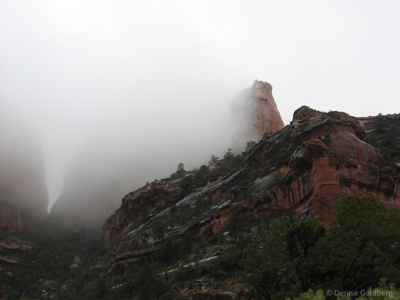 """<big>2004-02: Three seasons in three days</big> <br/><br/> Escaping from the northeast in the heart of winter is always a welcome break for me. I expected my three days in Sedona, Arizona to have a semblance of warmth, maybe a little cool, but dry. Instead, I had a day of sunshine and relative warmth, a day of rain, and a day of snow. Interesting hiking in a beautiful place.<br/><br/>  Click to visit my <a href=""""http://denisegoldberg2004sedona.blogspot.com/""""><b>journal</b></a> or <a href=""""/gallery/81583""""><b>photo galleries</b></a> from this trip."""