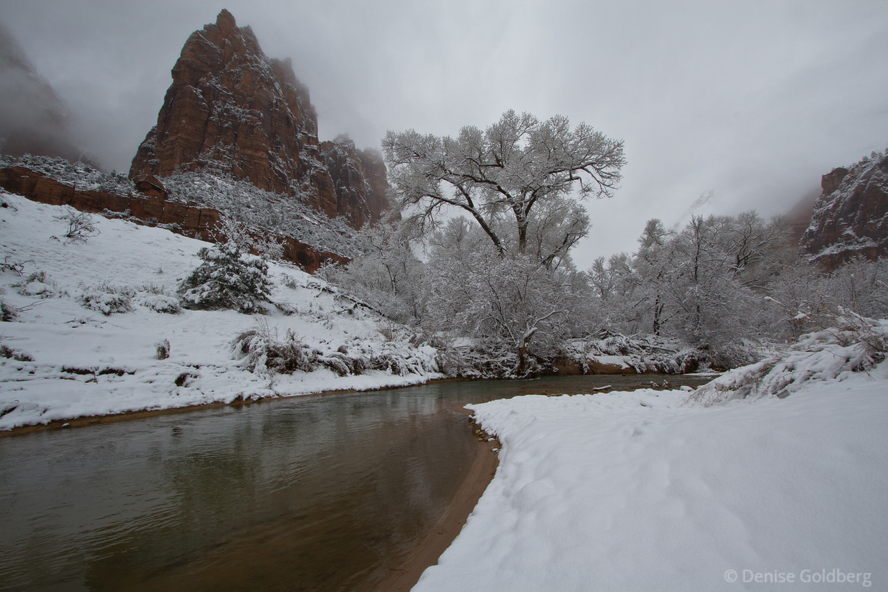 """<big>2011-02: Zion in white</big> <br/><br/>A long-weekend escape in late February in search of spring-like walking conditions pulled me to Zion National Park. The weather wizard surprised me with snow; in spite of that, Zion rewarded me with pure beauty. <br/><br/> My journal for this trip lives as entries within my blog. Click to read the <a href=""""http://denisegoldberg.blogspot.com/search/label/Zion%202011""""><b>TRIP-SPECIFIC BLOG ENTRIES</b></a> or my full <a href=""""http://denisegoldberg.blogspot.com""""><b>BLOG</b></a>.  <br/><br/> Click to visit the <a href=""""/Travel/Zion-in-white-2011/16085397_squVj""""><b>PHOTO GALLERY</b></a> from this trip."""