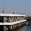 Travel; Denmark; Danmark; Hirsholmene;