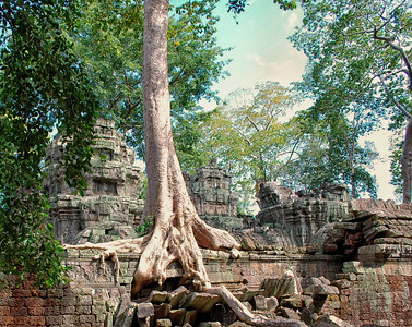 Cambodian Ruins