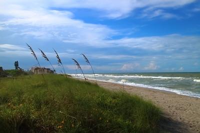 09-29 (Turtle Beach, Naples Beach and Miami South Beach)