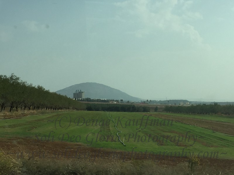 Mt Tavor or the mount of transfiguration. SO MUCH happened in this part of Israel! It's really amazing!