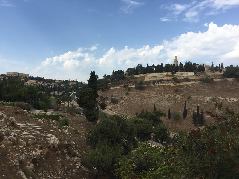 This is my spectacular view for the next week! From the balcony of my guesthouse run by a wonderful believer from Holland. That is the Old City near Jaffa Gate, and the tower is the Tower of David.