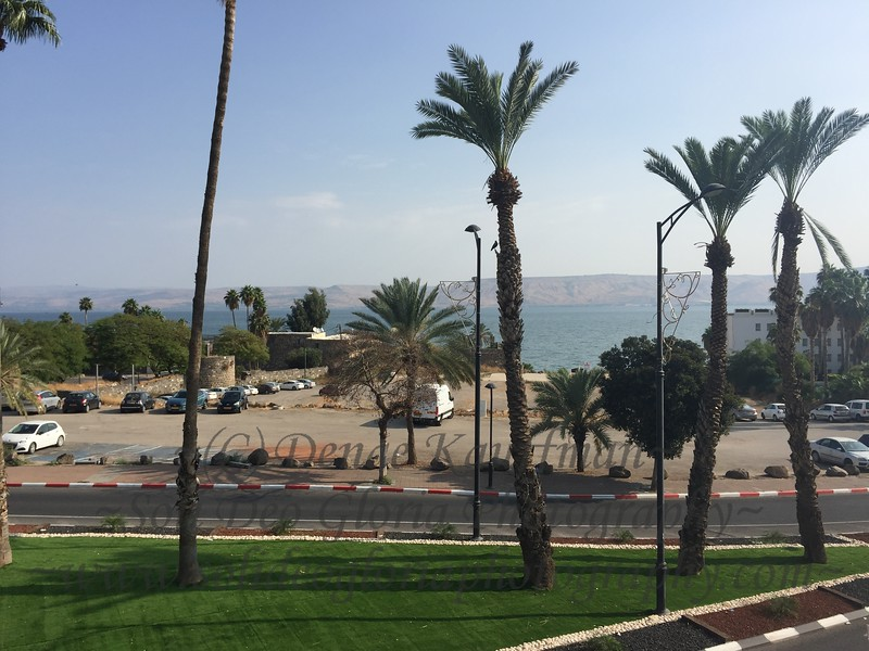 The view overlooking the sea of Galilee from my window at breakfast. This photo also has a Praise and Thanksgiving story behind it! While trying to arrange these photos for your viewing pleasure, the entire Israel album was completely deleted, and I was devastated! All the time that I have spent uploading photos and writing captions gone in two seconds! I wrote a note to my web host and went downstairs and we prayed for it to be restored, and this morning it was back! Thank you Lord! I would have never had time to redo the whole thing!