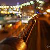 The Promenade Brooklyn
