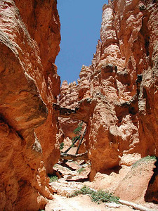 SIDE CANYON A little side canyon with its own bridges. Funny how they should form, but that's erosion at work for you. There's a lot of that around here.