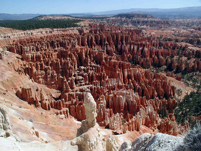 "AMPHITHEATER VIEW Here's an overall view of one of the main amphitheaters. Technically, Bryce Canyon is not a canyon at all, but a series of amphitheaters of rock formations lying below the plateau. This area was originally settled by a Mormon pioneer, one Ebenezer Bryce, whose friends began calling the place ""Bryce's Canyon."" In 1919, the Utah Joint Memorial passed legislation which would've called the place ""The Temple of the Gods National Monument,"" but when the it became a national park in 1924, the possessive was removed from it's original name and it became Bryce Canyon National Park, instead. Much better!"
