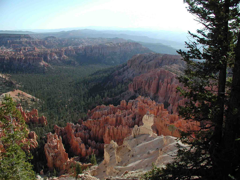WELCOME TO BRYCE CANYON<br /> And here we go on the canyon's Rim Walk on a mildly hazy morning. This was my first view of this place and I was awed. I'd always seen pictures of it, but nothing compared to seeing it first-hand. Spectacular would pretty much sum it up in one word, if you had to. I'm not sure right where we are, but I started on the south end of the Rim Walk, so I suspect we must be in the vicinity of Bryce Point.