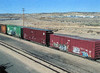 """TAGGED TRAIN CARS<br /> As it always is with train cars, they come in a variety of colorful """"tagging"""" motifs. Whether or not this happened here or in another trainyard is anybody's guess."""