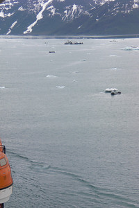 The bay the Hubbard is in, is laced with small icebergs.