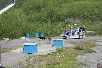 The first crowd. 18 dogs, hauling ass, and the Musher rides the brake!