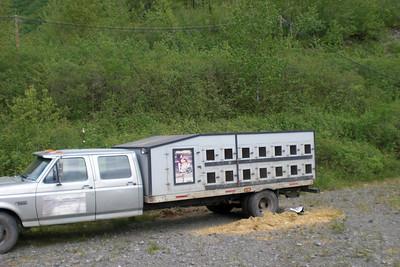 A dog-hauling truck.