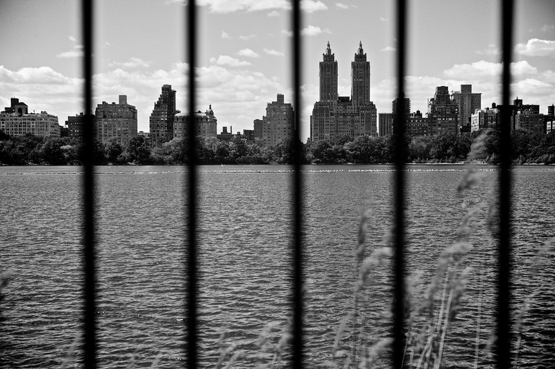 Shot of the city from Central Park