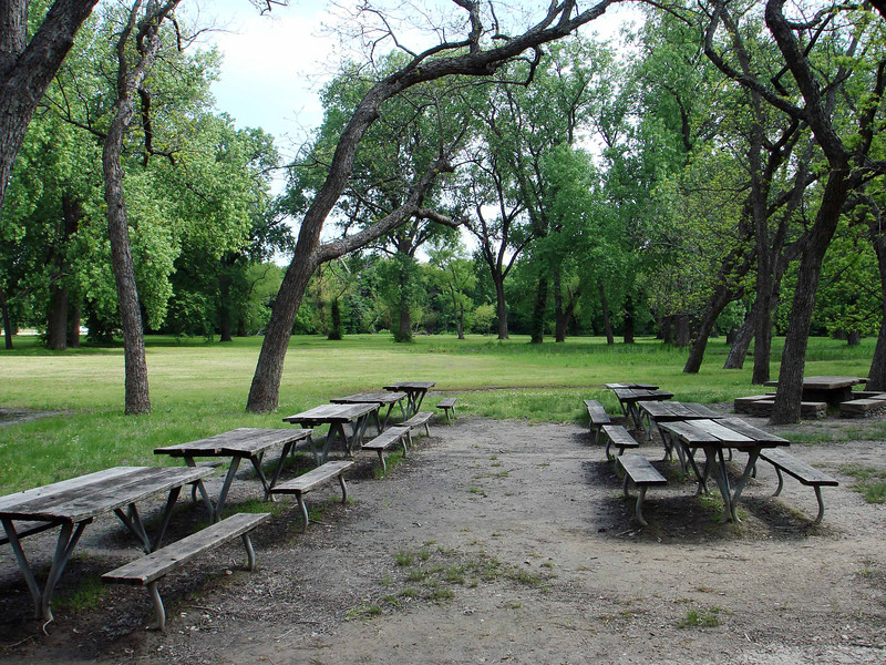OUTSIDE PICNIC AREA<br /> Plenty of room out here for everybody to eat and play games.