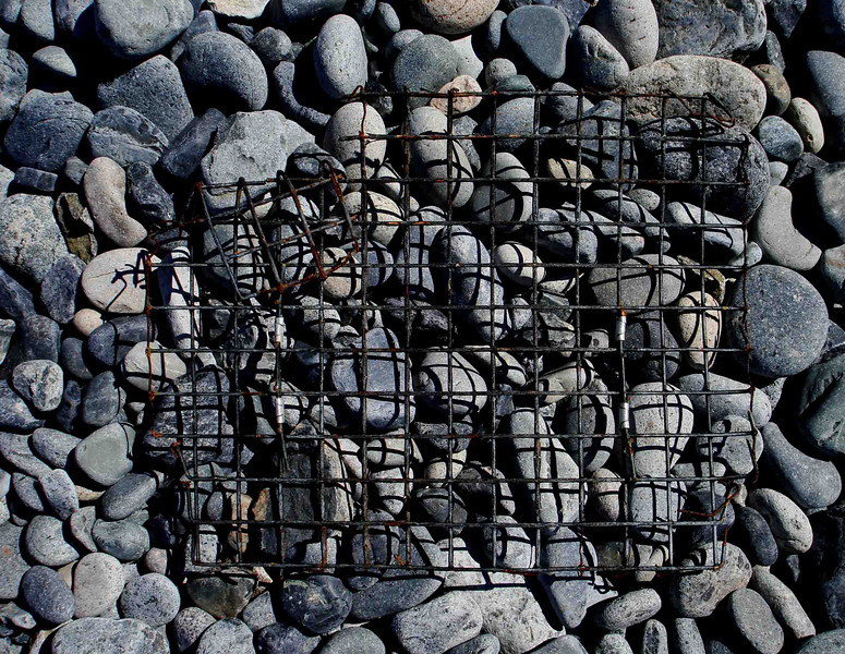 GRIDLOCK<br /> I found the juxtaposition between the smooth, rounded rocks and the hard, angular grid of the section of a lobster trap with its accompanying shadows particularly fascinating. You have to be on the lookout for this stuff all the time.