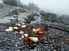 A DASH OF COLOR<br /> While assessing one of the trails along the coast, we came across this scene of colorful lobster pot floats lying on an otherwise monochromatic beach. I just couldn't resist.